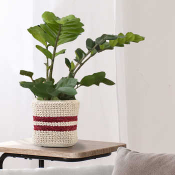 Ivory Cotton Woven Basket